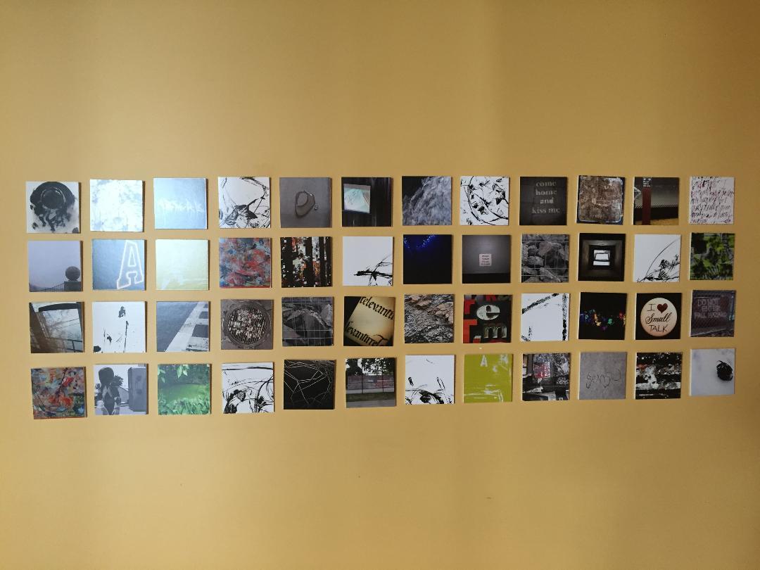 48 photos